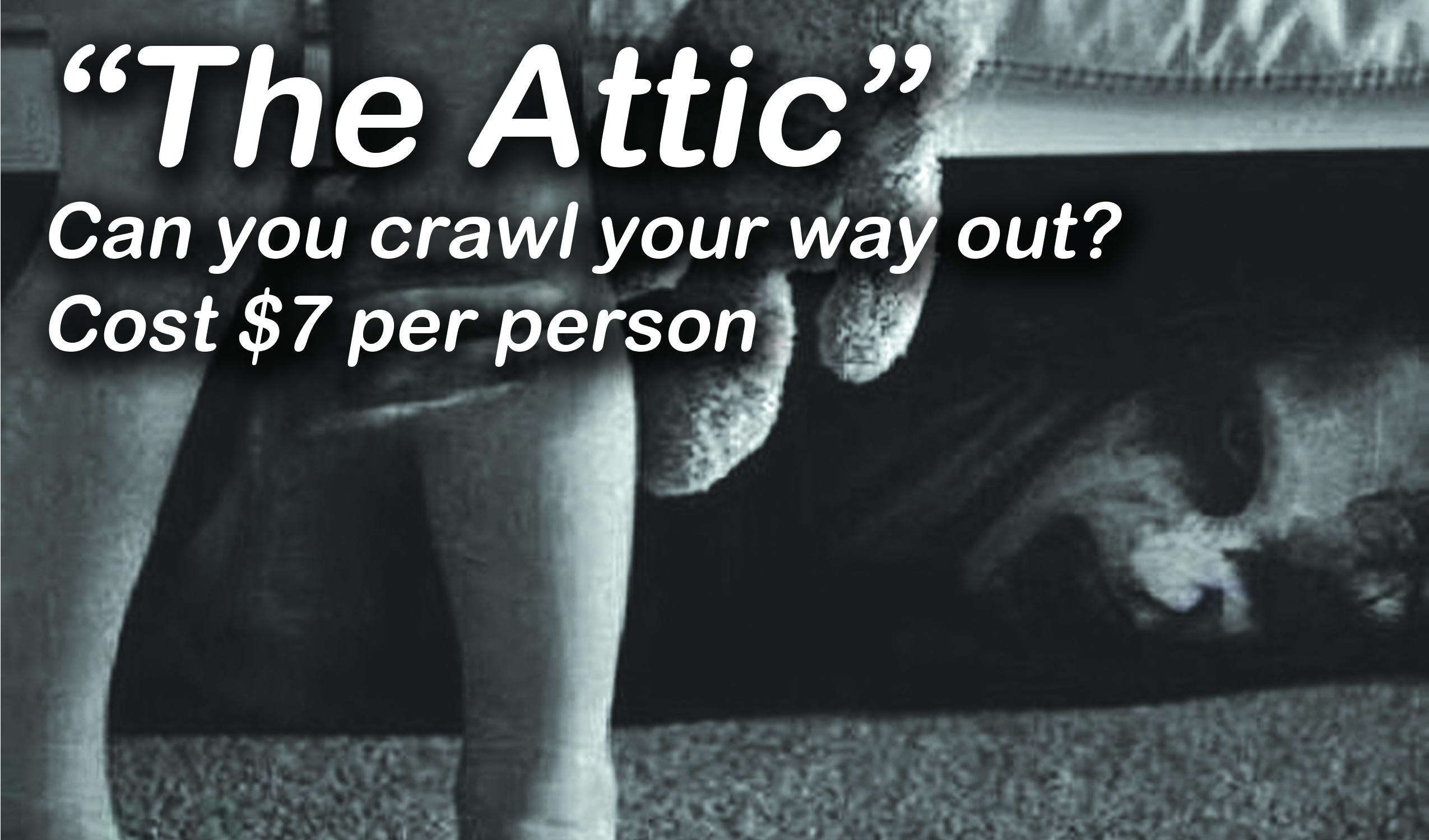 attic-banner